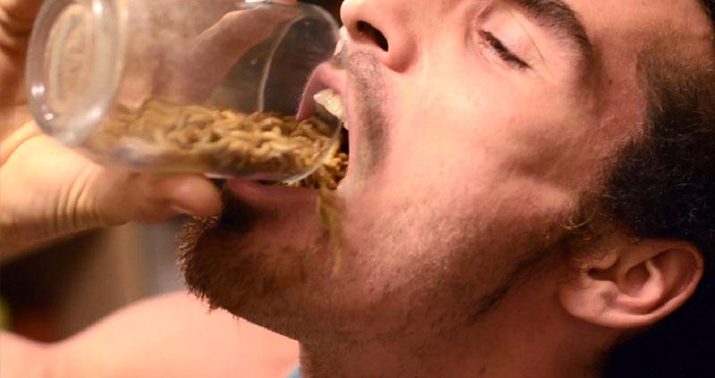 Comendo 660 vermes vivos